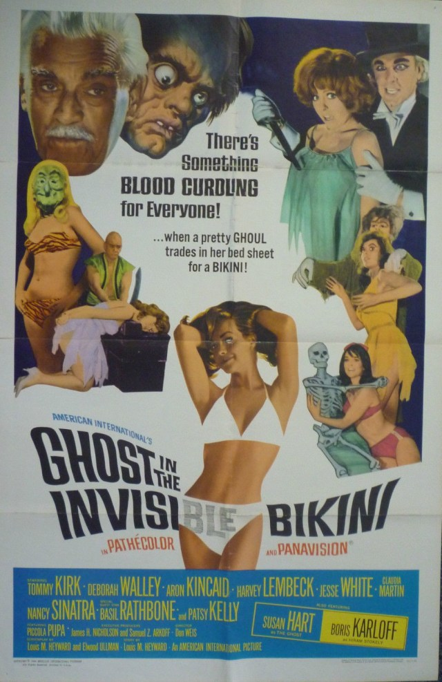 The Ghost in the Invisible Bikini 1