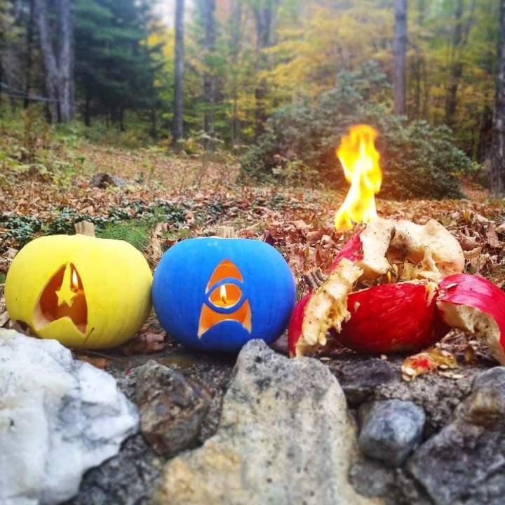 star trek pumpkins.jpg