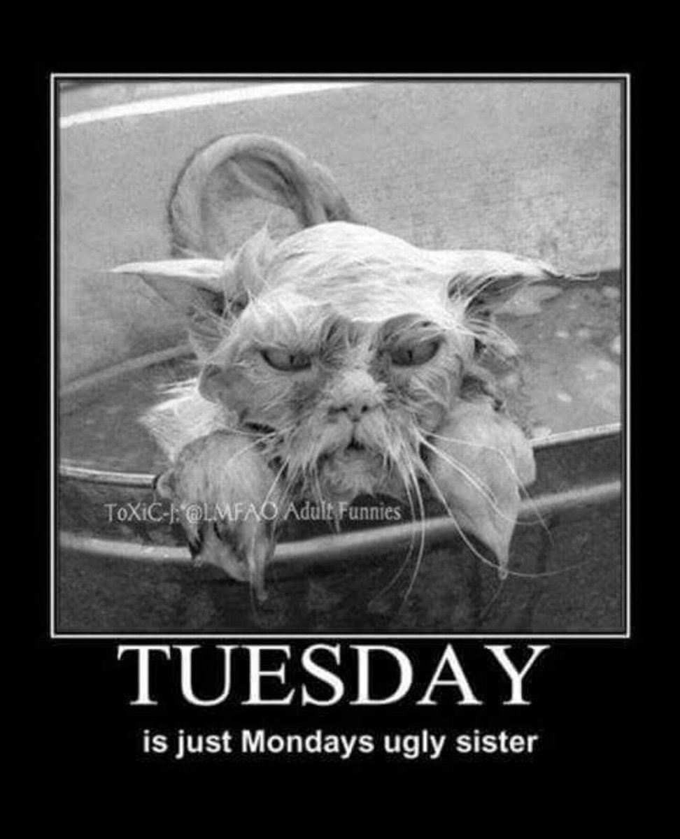 Tuesday…