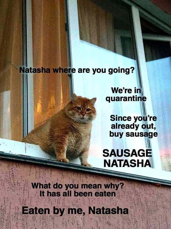 Natasha where are you going