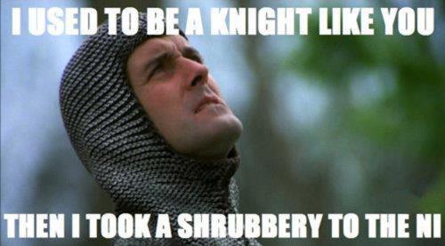 knight.jpg (22 KB)