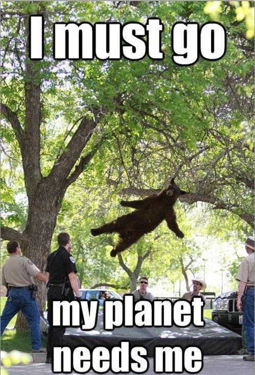 planet-needs-me.jpg (131 KB)