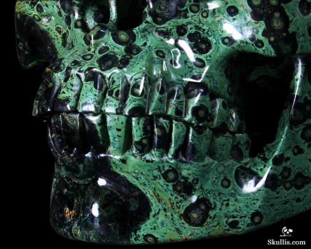 Kambaba-Jasper-Crystal-Skull-28.jpg (77 KB)