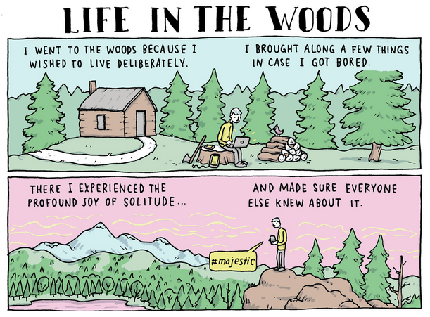 life-in-the-woods.png (355 KB)