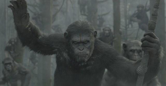 dawn-of-the-apes-caesar-lg.jpg (251 KB)