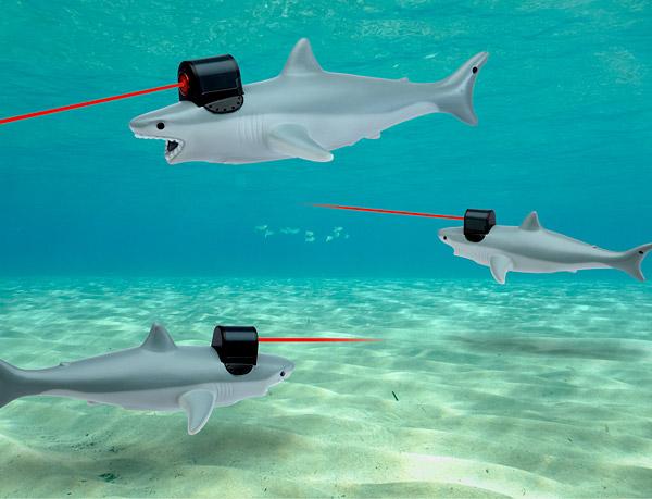 f2eb_shark_w_frickin_laser_pointer_water.jpg (70 KB)