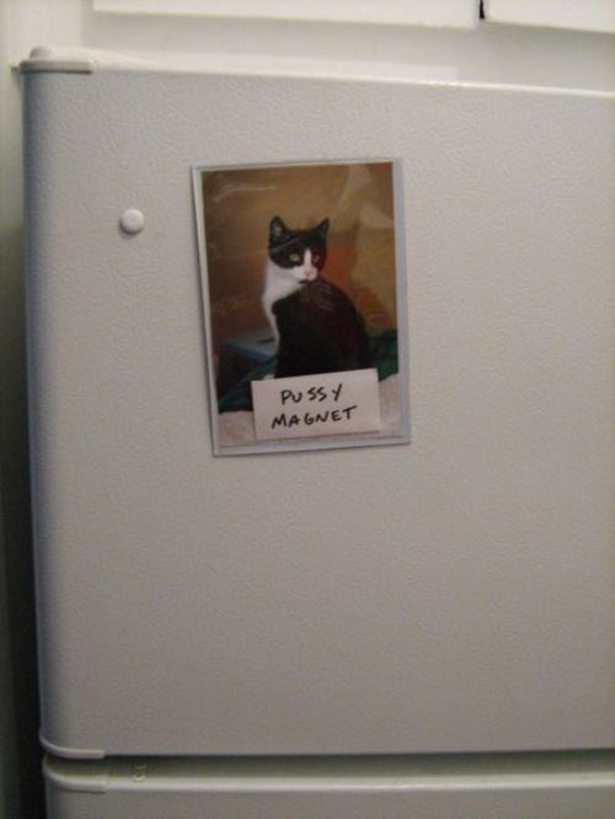 pussy-magnet.jpg (184 KB)