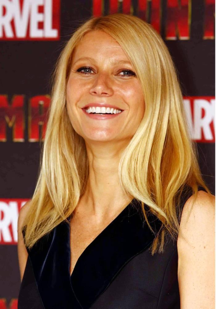 Iron-Man-3-Gwyneth-Paltrow.jpg (426 KB)
