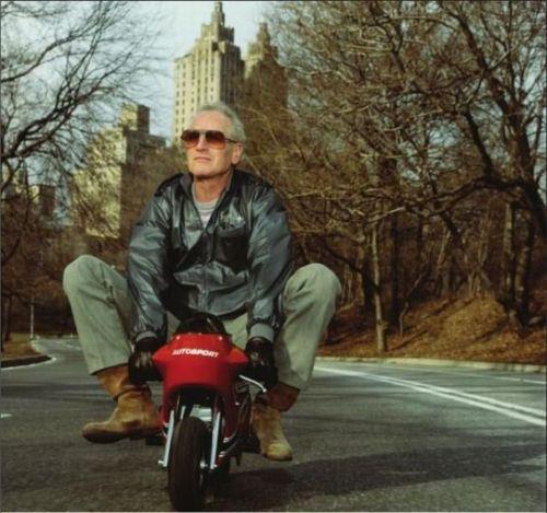 Paul-Newman.jpg (44 KB)
