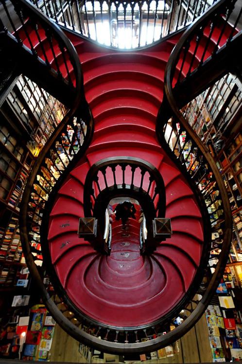 organic-stairs.jpg (182 KB)