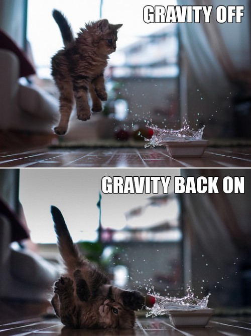 Gravity-Off-and-On-500x669.jpg (70 KB)