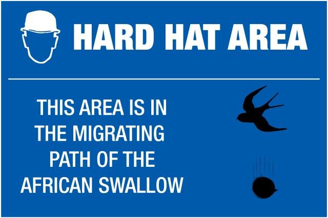 hard_hat.jpg (986 KB)