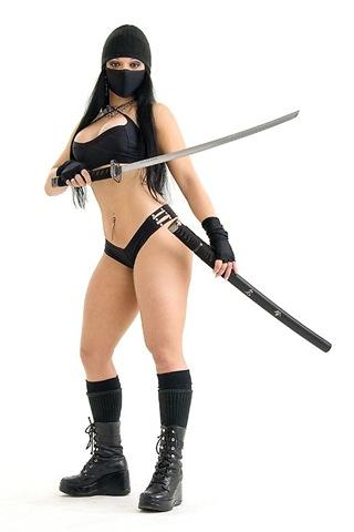 ninja2.jpg (25 KB)