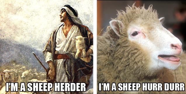 herder.jpg (307 KB)