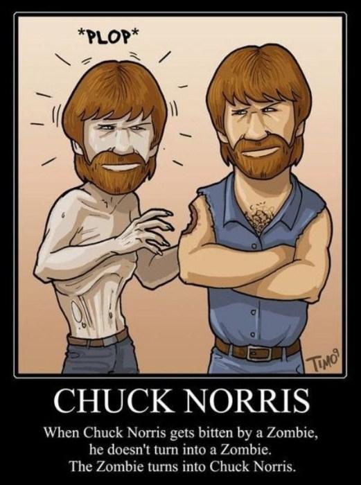 Chuck-Norris-bitten-by-Zombie.jpg (76 KB)