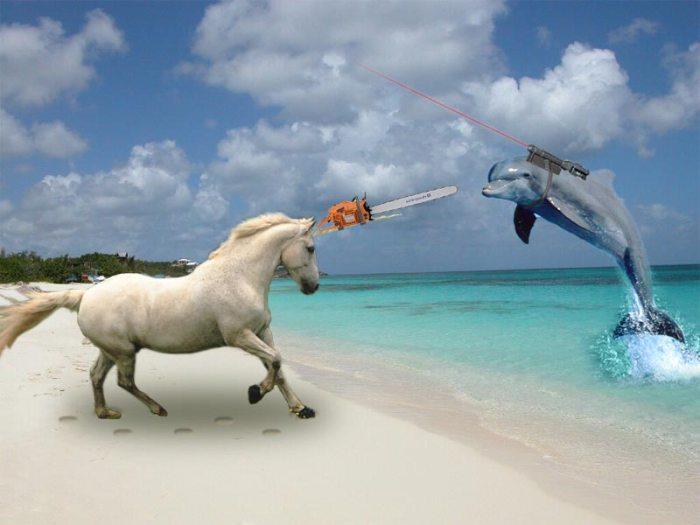 unicornvsdolphin.jpg (50 KB)