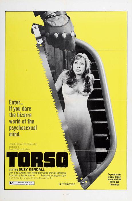 torso.jpg (613 KB)