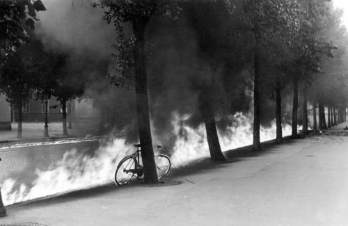 Bike Fire.jpg (149 KB)