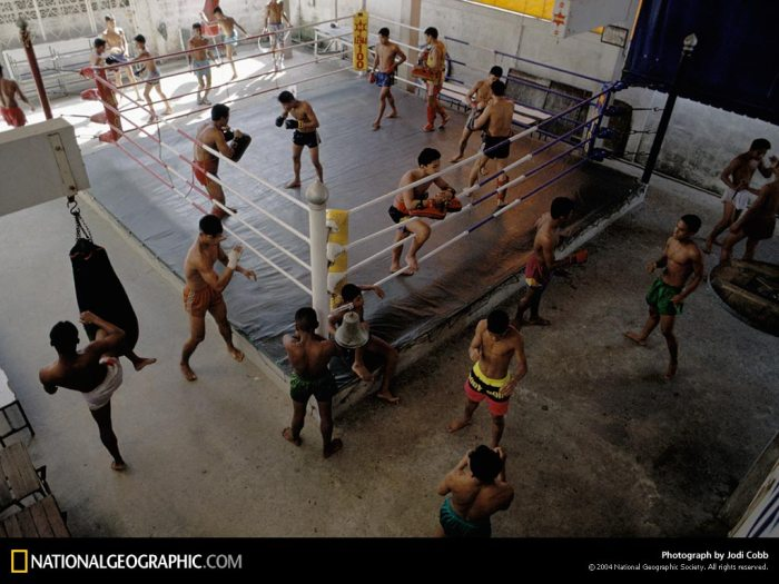 2800.Pics-National.Geographic.Photo.Of.The.Day.Collection._2001-2009_---SaFTaZeeN-1321.jpg_muay-thai-boxing-501506-lw.jpg (132 KB)