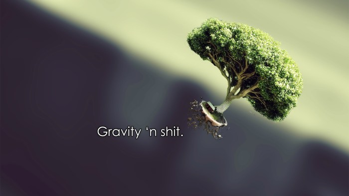 gravity.jpg (238 KB)