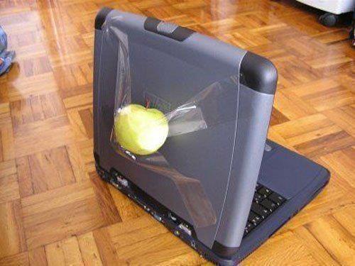apples.jpg (33 KB)