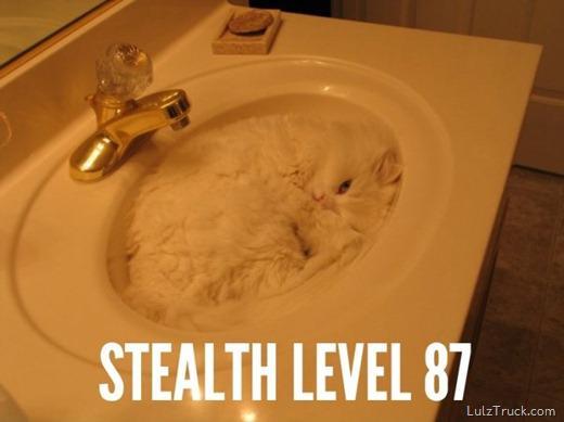 stealth.jpg (20 KB)