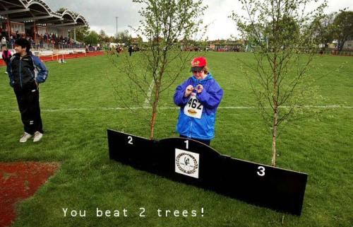 beat2trees.jpg (79 KB)