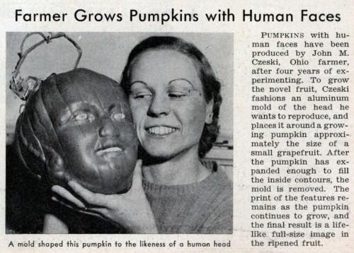 pumpkin_face.JPG (259 KB)