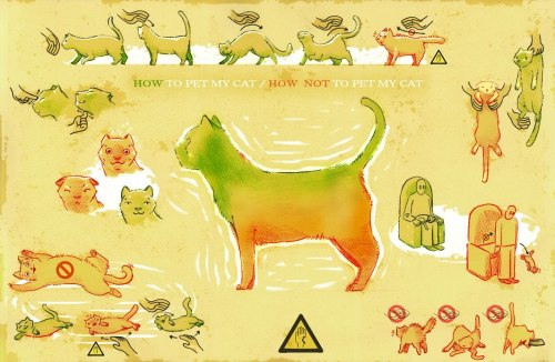 how-to-pet-my-cat.jpg (163 KB)