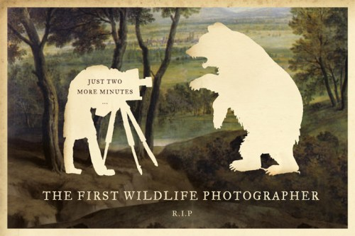01wildlifephotographer.jpg (99 KB)