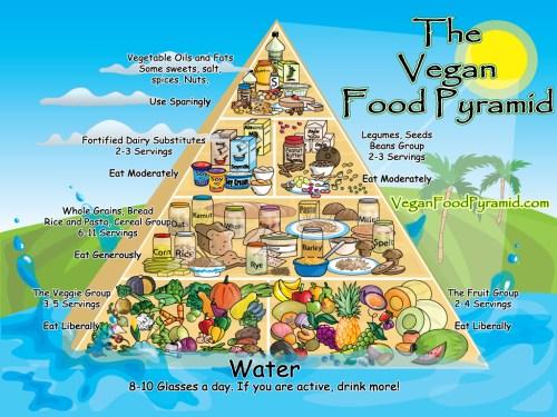 vegan-pyramid.jpg (428 KB)