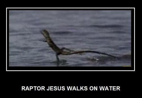 raptor-jesus-walks-on-water.jpg (23 KB)