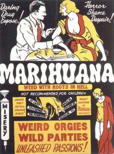 marihuana.jpg (114 KB)
