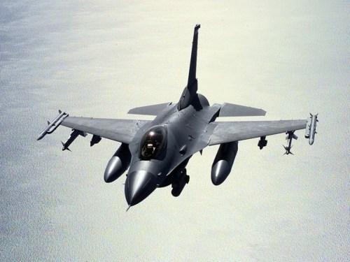 falcon3.jpg (445 KB)