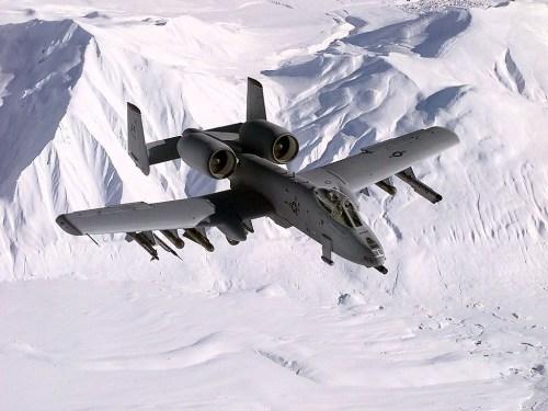 warthog1.jpg (501 KB)