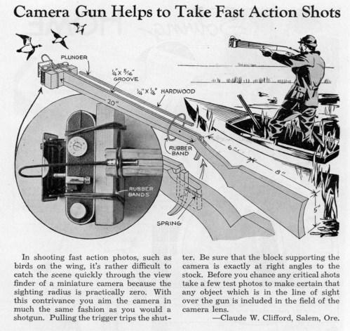 camera_gun2.jpg (358 KB)