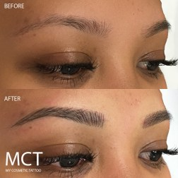 Eyebrow Feathering Tattoo 3D