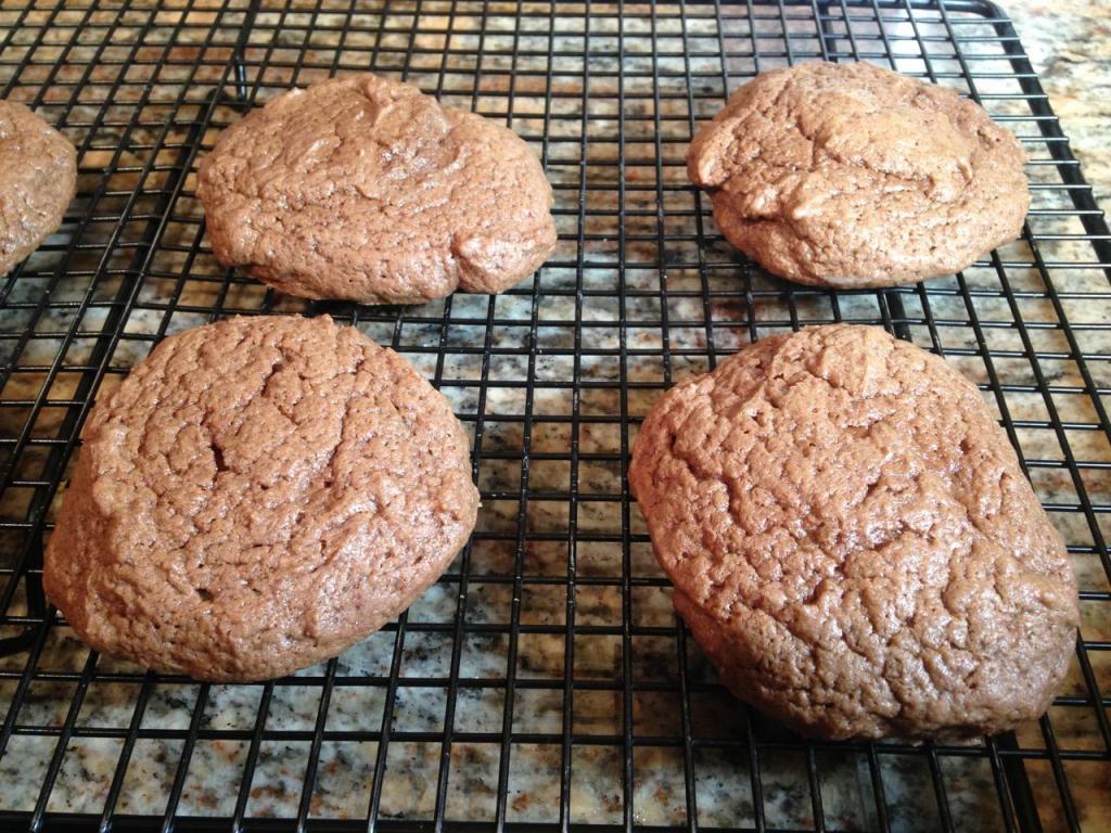softbatchchocolatecocoacookies - 20