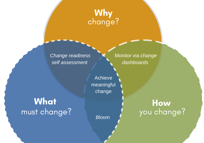 Describes where the how of change fits in