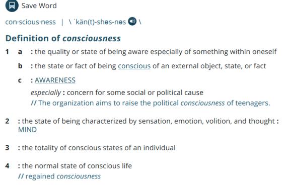 Definition of conciousness