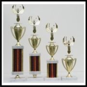 Custom Awards trophies category icon
