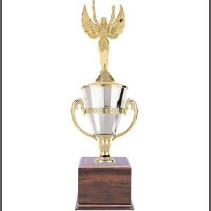 Cup Base Trophies