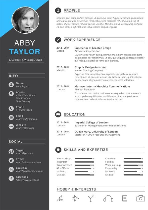 Elegant Designer CV Template Editable Downloadable CV Word