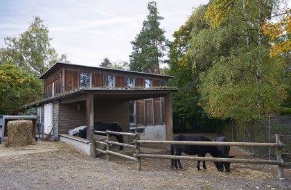 Gockenhausen127