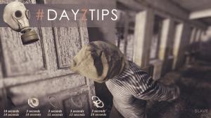 DayzTips 5