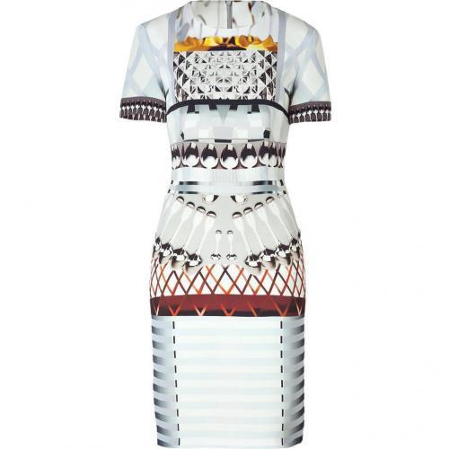 Mary Katrantzou Silver Snowglad Silk Dress for STYLEBOP.com