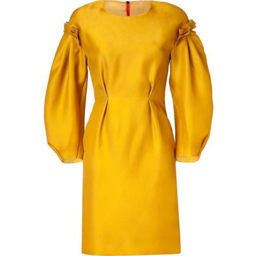 Roksanda Ilincic Mustard Organza Dress