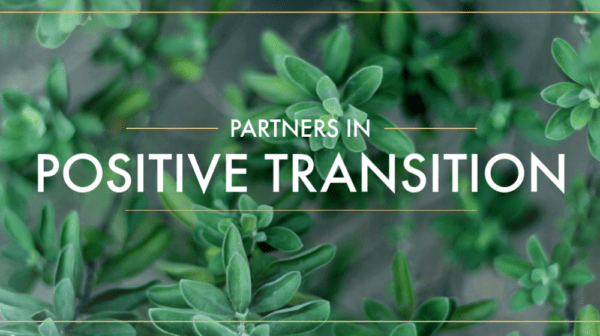 Partners in Positive Transition, Part 2 Image