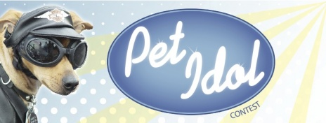 July 6th – DOG IDOL CONTEST AND PIGGY BANK GIVEAWAY