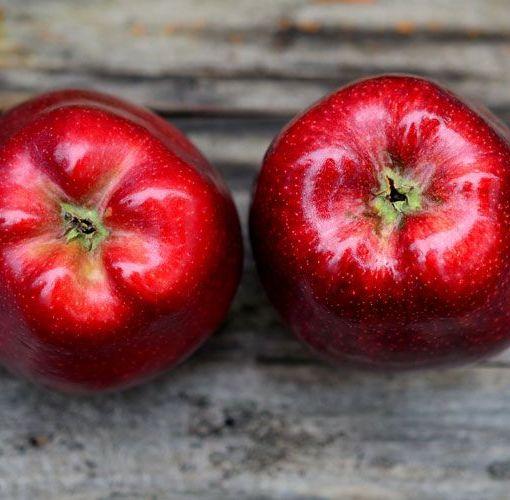 Μήλο. Γιατί αποτελεί συνειρμικά σύμβολο της υγιεινής διατροφής;